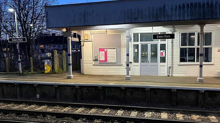 Investigation launched into fatal accident at Eden Park station